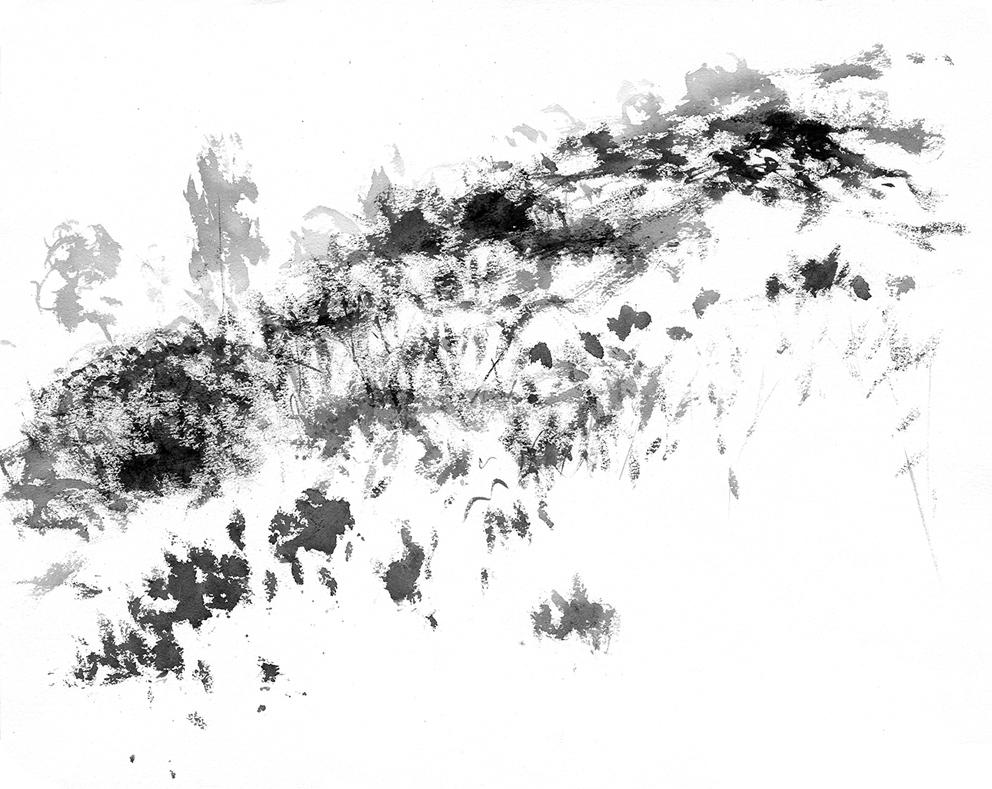 Paysages nomades - 2