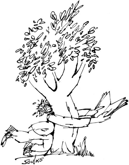Hauts les arbres - 2
