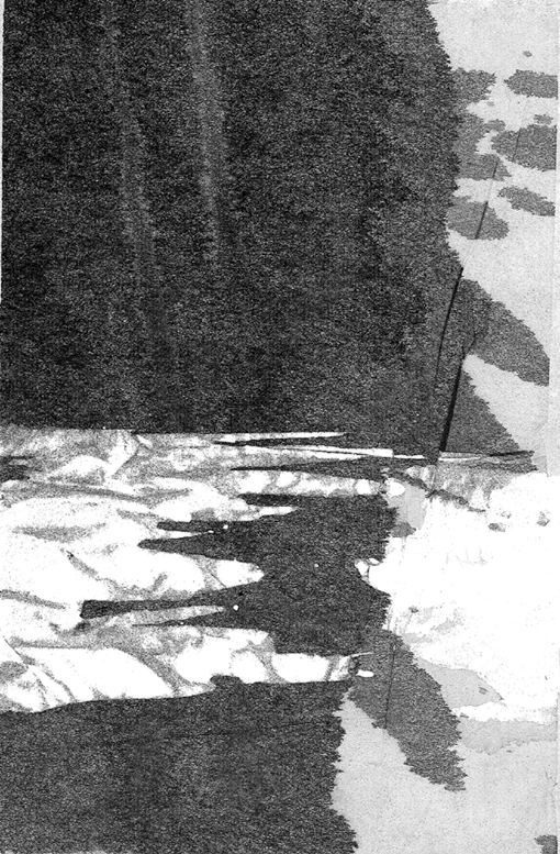 Terre d'ombre - 2