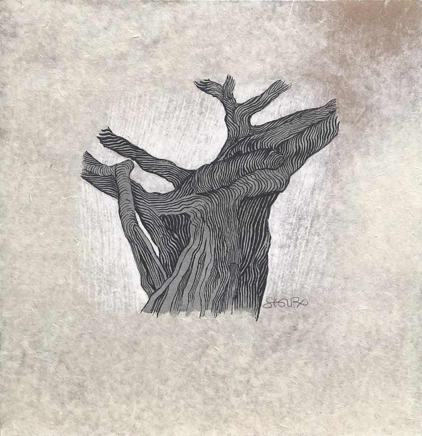Les arbres sont aussi du silence - 2