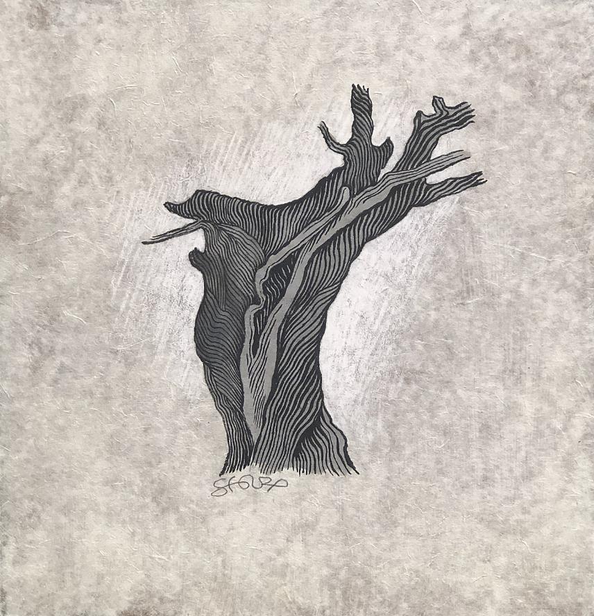 Les arbres sont aussi du silence - 3